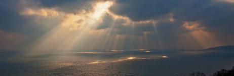 Sunlight Spotlight(s)