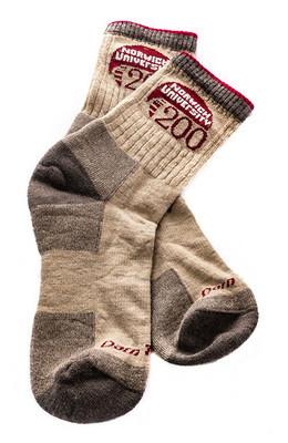 Bicentennial Socks