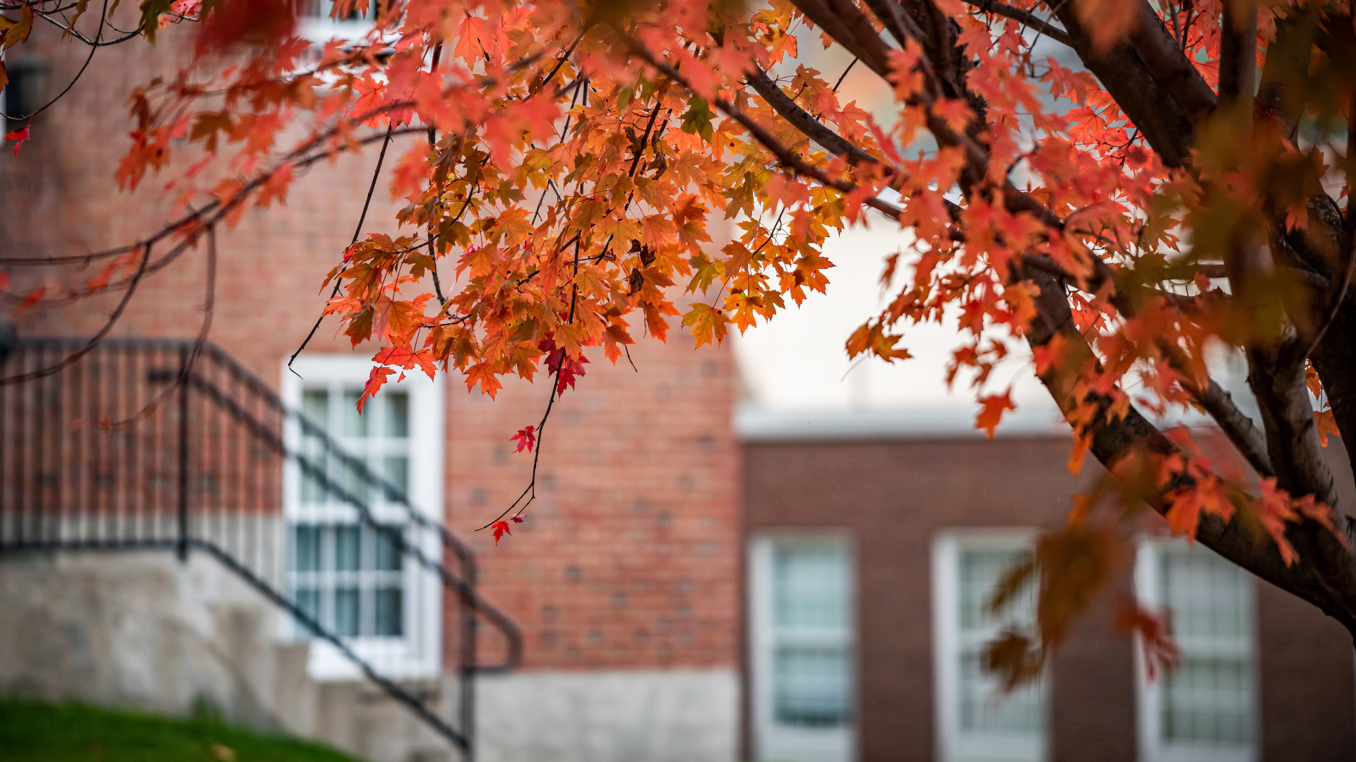 Campus Scenic Fall 2019